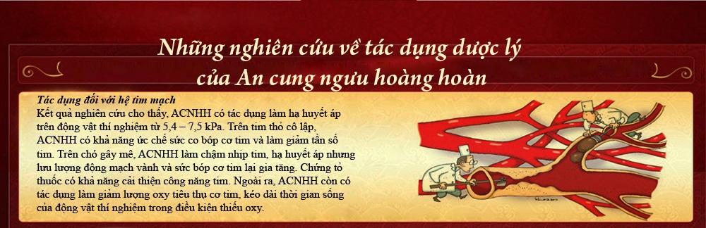 cong-dung-chua-benh-cua-an-cung-nguu_7