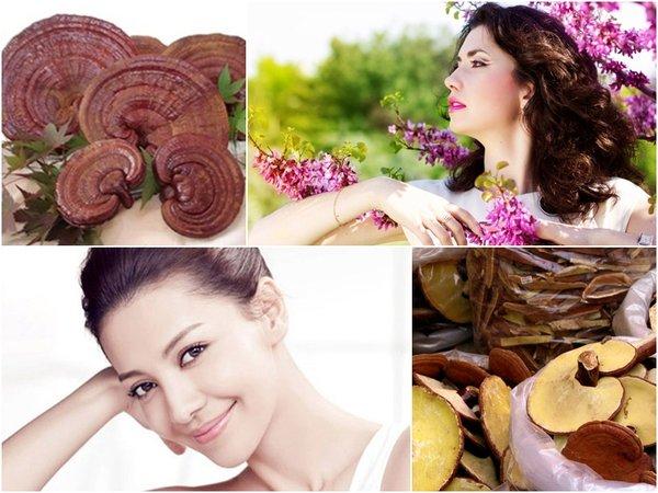 Sử dụng nấm linh chi cho phụ nữ mang hiệu quả gì?