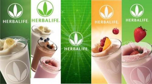 Herbalife bao gồm những gì