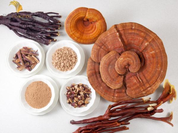 Hướng dẫn sử dụng nấm linh chi hiệu quả