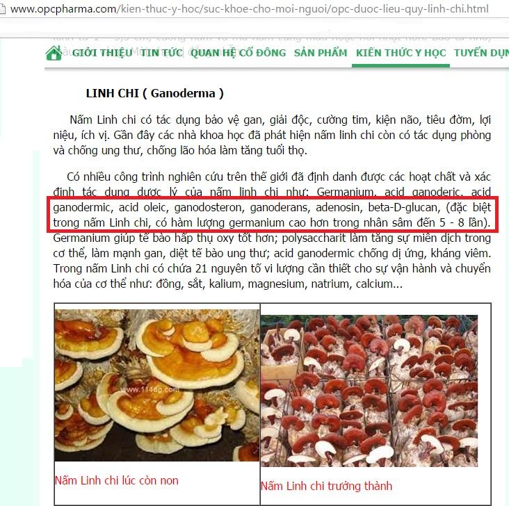 Tác dụng chữa bệnh của nấm linh chi Hàn Quốc Tác dụng chữa bệnh của nấm linh chi Hàn Quốc