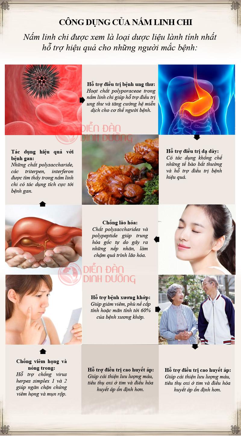 Tác dụng chữa bệnh của nấm linh chi Hàn Quốc