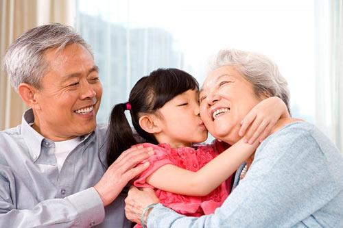 Tác dụng của nấm linh chi đối với người cao tuổi