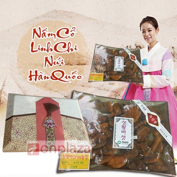 Dùng nấm linh chi Hàn Quốc làm quà biếu sếp có phù hợp không?