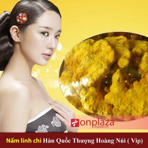 Tác dụng của nấm linh chi Hàn Quốc loại thượng hạng